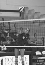 Volleyball Ends Season With Split