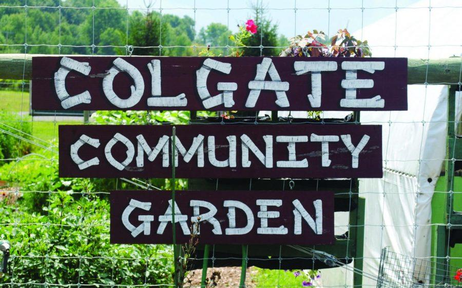 Colgate's Community Garden Relocates and Works to Promote Sustainable Living