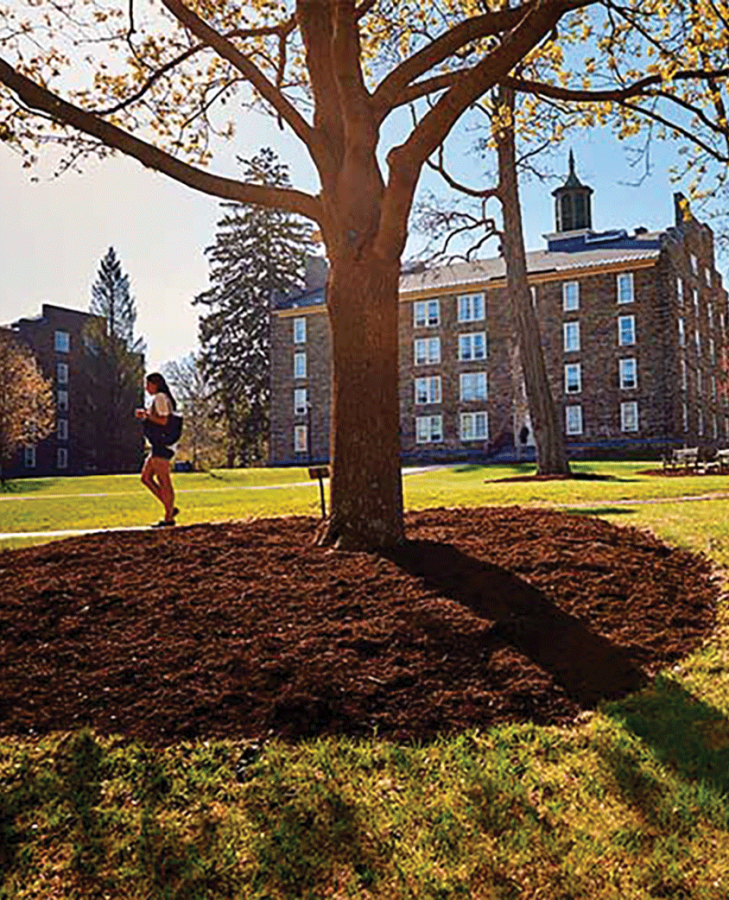 Colgate+sustainability+began+their+13+Days+of+Green+with+a+celebration+on+the+academic+quad.