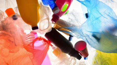 Wash Your Hands and Your Plastics, Too