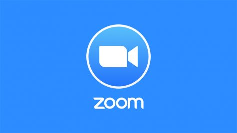 Business As Usual: Zoom's Best Friend, COVID-19
