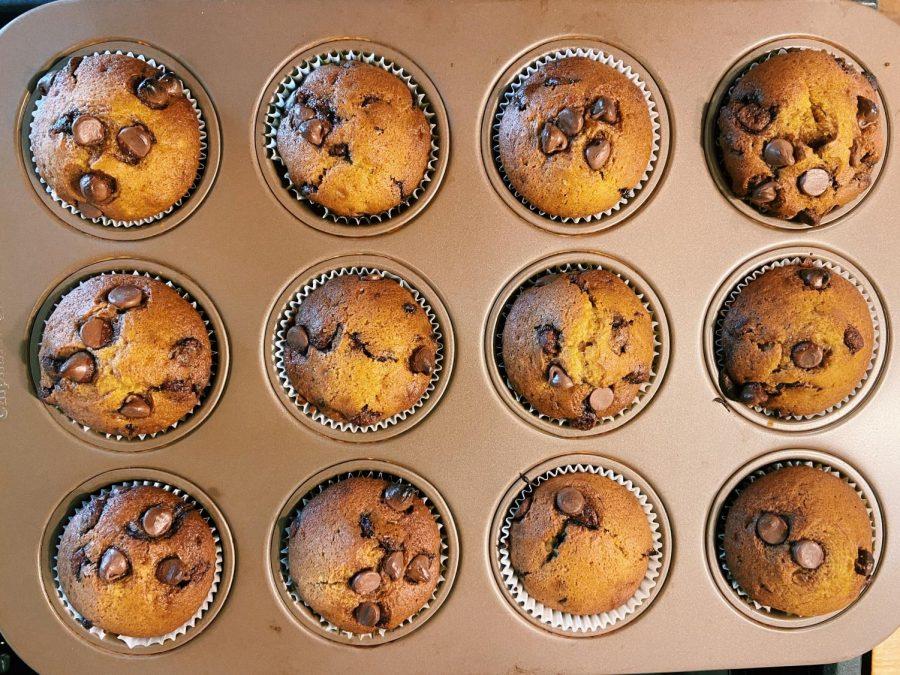 The 'Gate Plate: Pumpkin Chocolate Chip Muffins