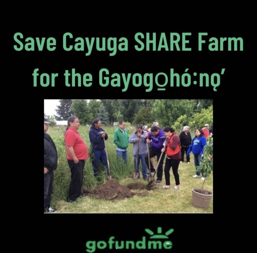 GoFundMe+Provides+Solution+for+Cayuga+SHARE+Farm+to+Protect+Indigenous+Land
