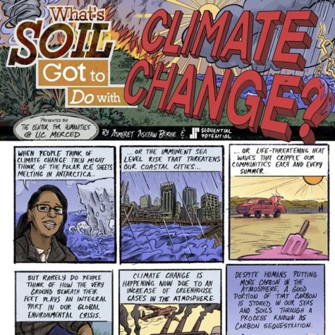 Professor Asmeret Asefaw Berhe on the Role of Soil in Climate Change