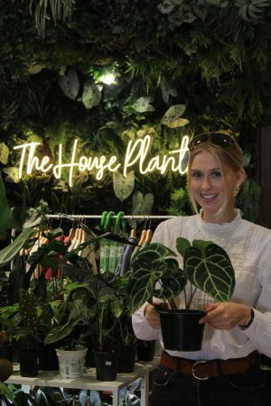 The House Plant Co. Opens in Downtown Hamilton